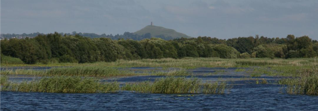 Avalon Marshes in Somerset