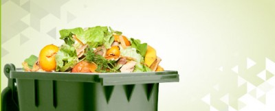 what-is-food-waste